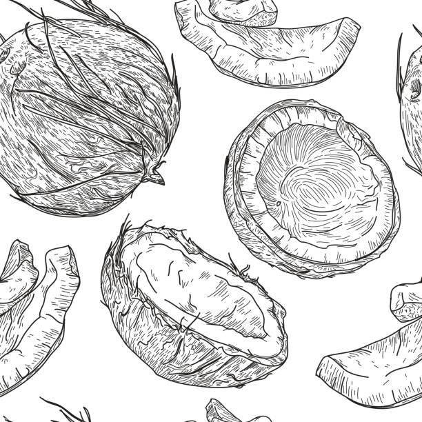 Crazy for Coconuts Pattern vector art illustration