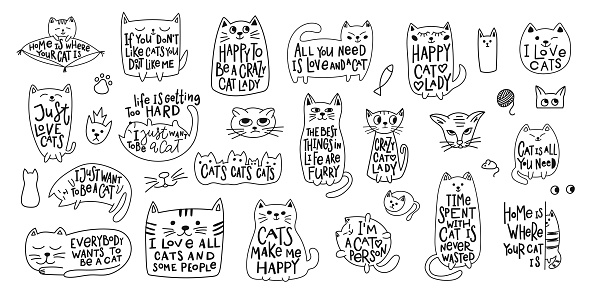 Download Crazy Love Cat Lady Shirt Quote Lettering Stock ...