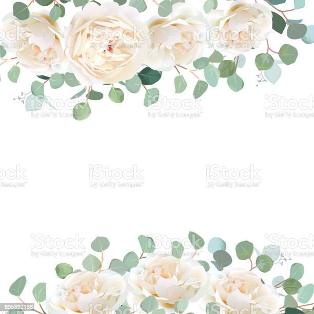 Creamy white roses and silver dollar eucalyptus branches vector vector id895392168?b=1&k=6&m=895392168&s=612x612&h=evmgncojot2ocxuypz3wijp2redmjg3zramzwfqqhmy=