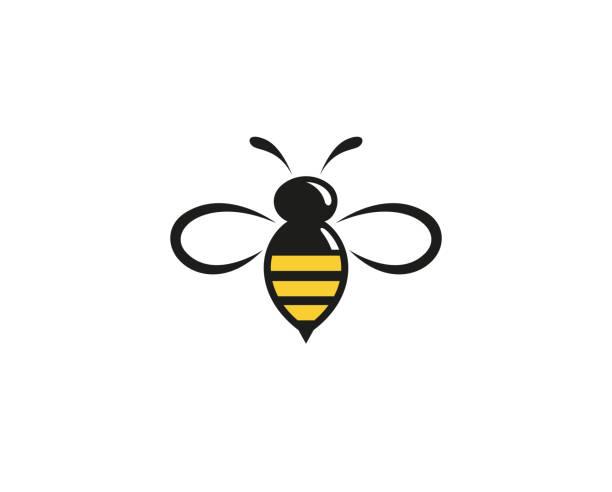 ilustrações de stock, clip art, desenhos animados e ícones de creative abstract bumblebee logo design vector symbol illustration - inseto himenóptero