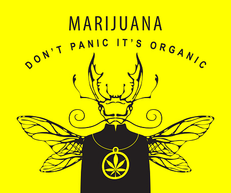 creative banner for legalize marijuana with beetle