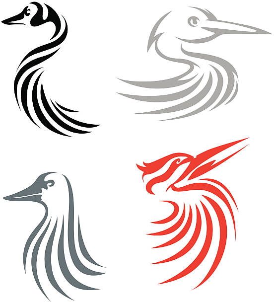 Creative Bird Illustrations Creative illustrations of Canada goose (with black colored body), great egret (with light brown colored body), common loon (with gray colored body), and ivory billed woodpecker (with red colored body) birds. loon bird stock illustrations
