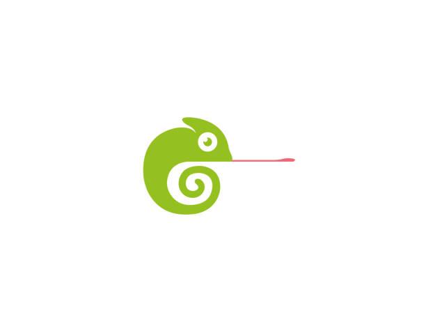 creative chameleon logo - chameleon stock illustrations