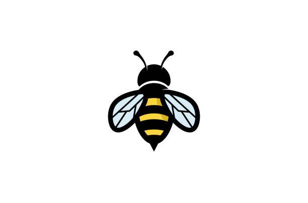 ilustrações, clipart, desenhos animados e ícones de logotipo de abelha geométricas criativas - bee