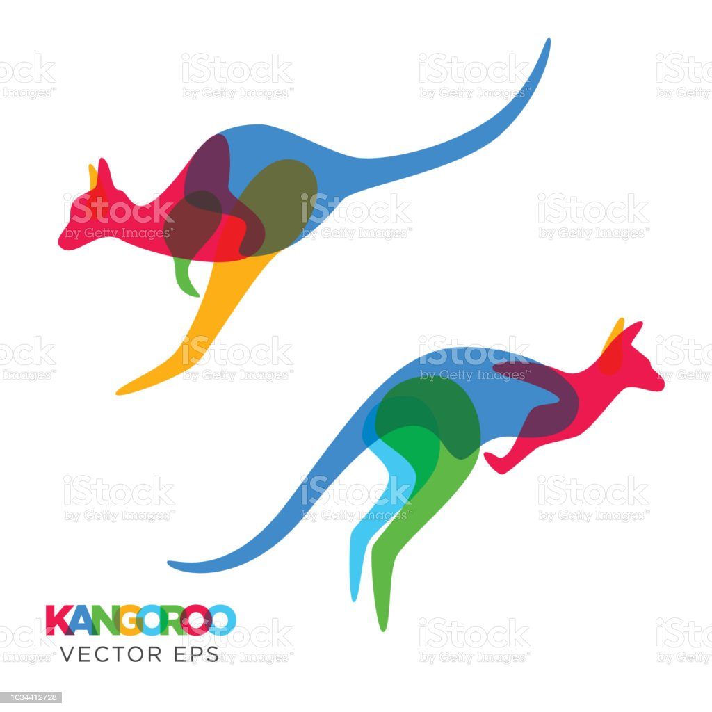 Creative Kangaroo Animal Design, Vector eps 10