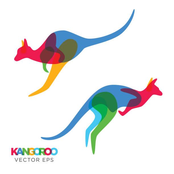 Creative Kangaroo Animal Design, Vector eps 10 an amazing design illustration of Creative Animal Design, Vector eps 10 kangaroo stock illustrations