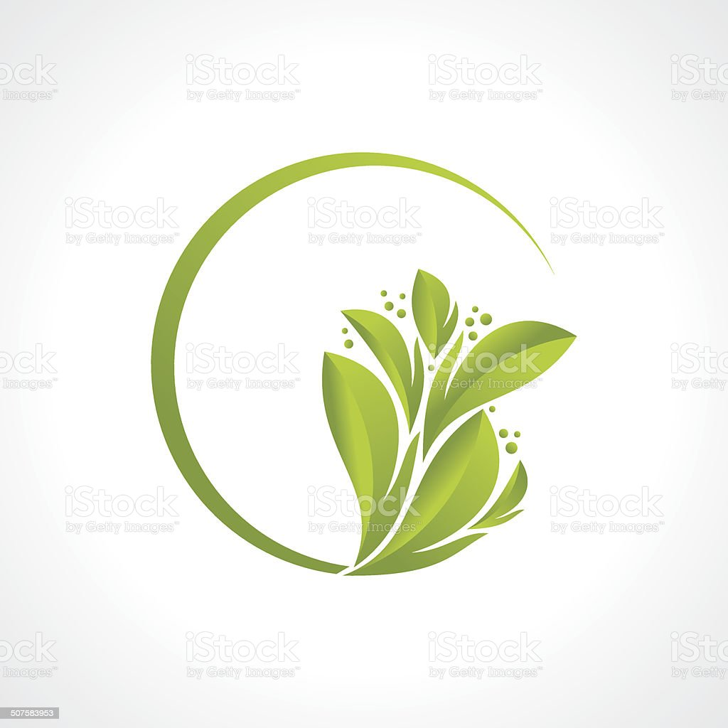 creative leaf design vector vector art illustration