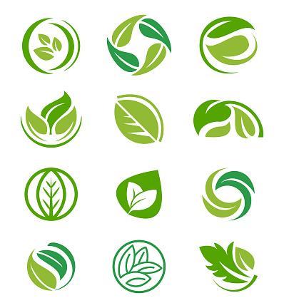 Creative leaf inspiration vector design template.