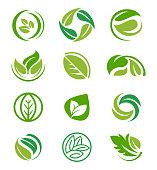 istock Creative leaf inspiration vector design template. 1138139304