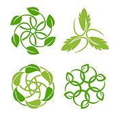 Vector illustration of the leaf inspiration vector design template on white backgrounds.