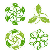 Vector illustration of the leaf inspiration vector design template on white backgrounds.