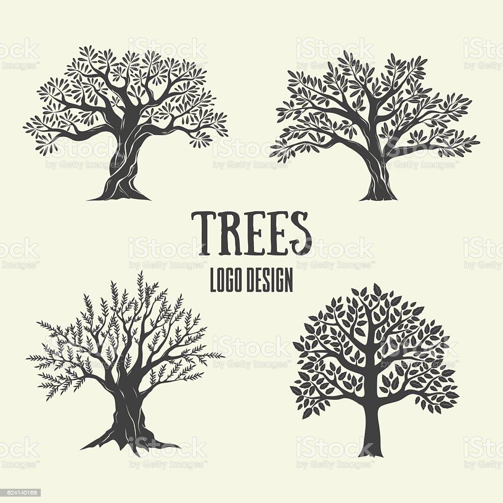 Creative olive, argan and coffee trees silhouette. Vector illustration. – Vektorgrafik