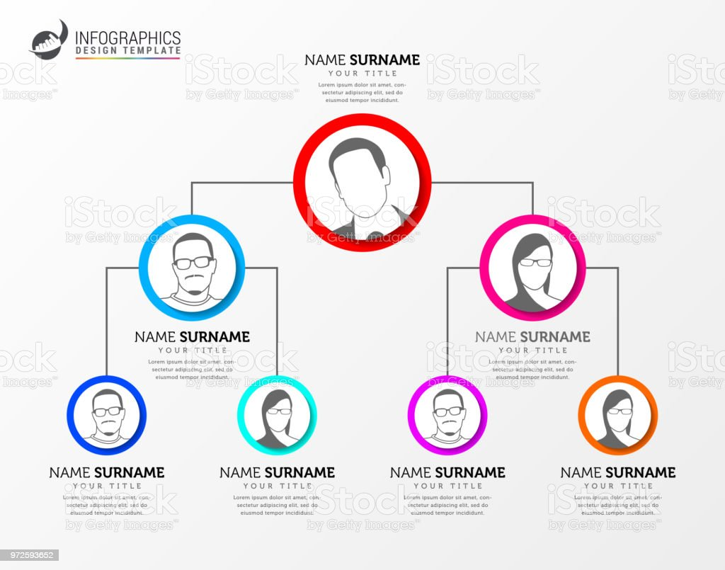 Creative Organization Chart Infographic Design Template Vector Stock
