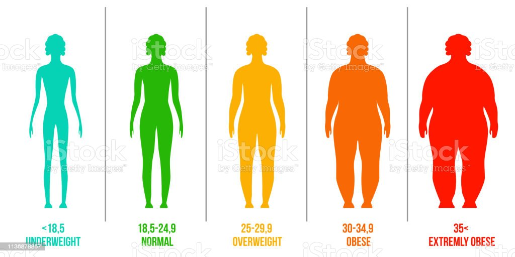 creative vector illustration of bmi body mass index infographic chart with silhouettes and scale isolated on transparent background art design health life template abstract concept graphic element stock illustration download image creative vector illustration of bmi body mass index infographic chart with silhouettes and scale isolated on transparent background art design health life template abstract concept graphic element stock illustration download image