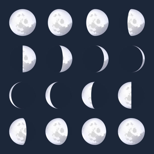 creative vector illustration of realistic moon phases schemes isolated on transparent background. art design lunar calendar. different stages of moonlight activity. abstract concept graphic element - moon stock illustrations, clip art, cartoons, & icons