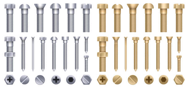 ilustrações de stock, clip art, desenhos animados e ícones de creative vector illustration of steel brass bolts, metal screws, iron nails, rivets, washers, nuts hardware side view isolated on transparent background. art design abstract concept graphic element - calçado com pitões