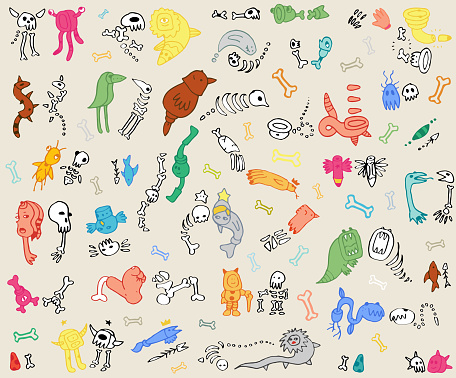 Creatures and their Skeletons, Skulls - Cute Life & Death Doodle