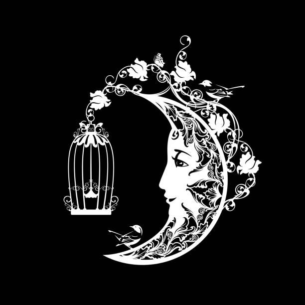 illustrations, cliparts, dessins animés et icônes de le croissant de lune et le roseraie magique avec la conception noire et blanche de silhouette de vecteur d'oiseaux - cage animal nuit