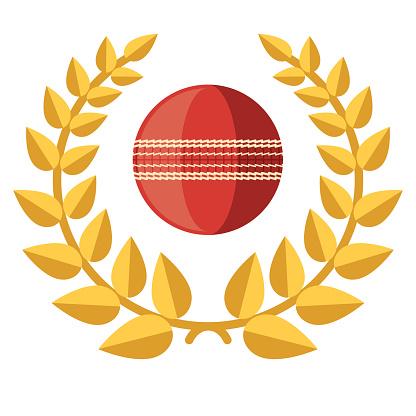 Cricket Award Icon on Transparent Background