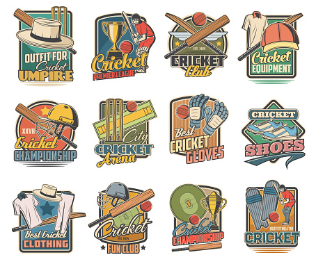Cricket game vector icons, field, sports equipment