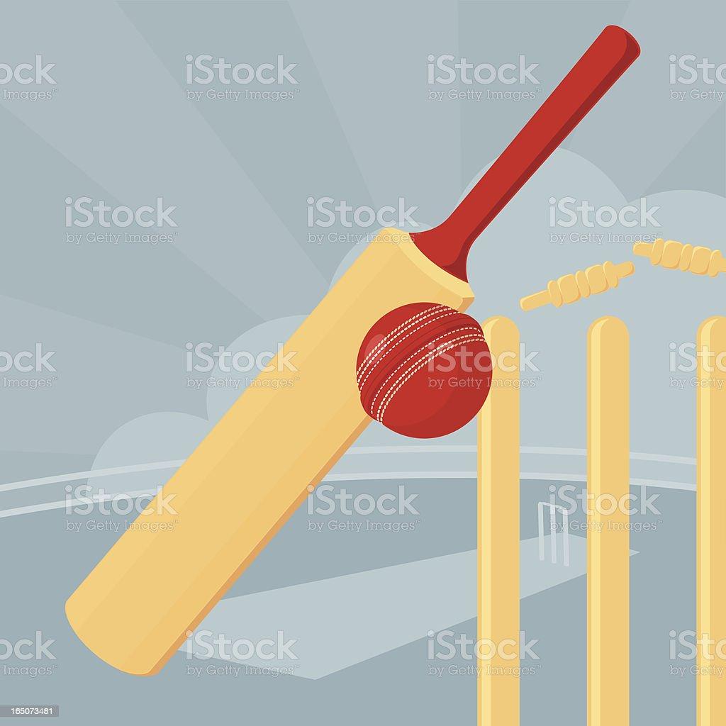 Cricket - incl. jpeg vector art illustration