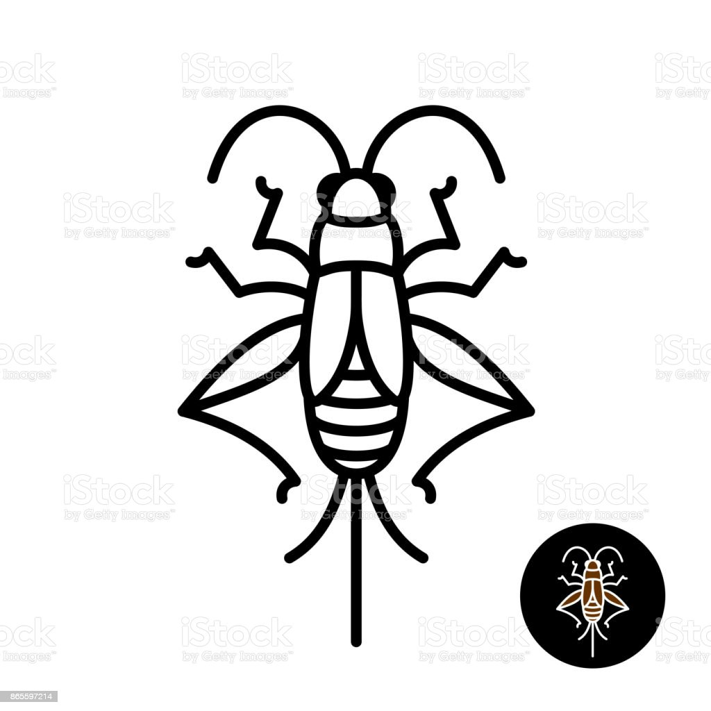 Cricket insect stylized symbol. vector art illustration