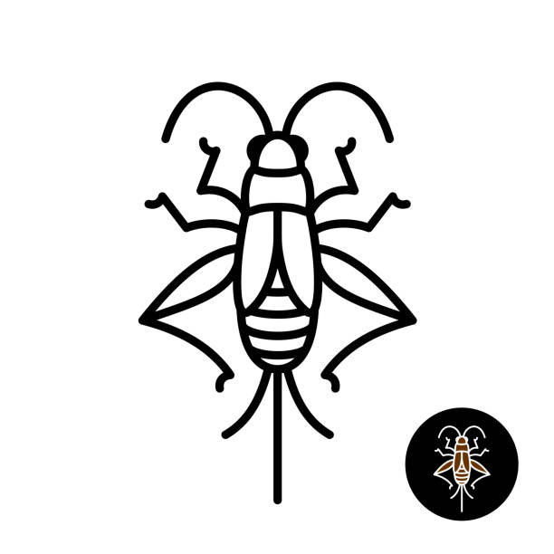 cricket insect stylized symbol. - cricket stock illustrations, clip art, cartoons, & icons
