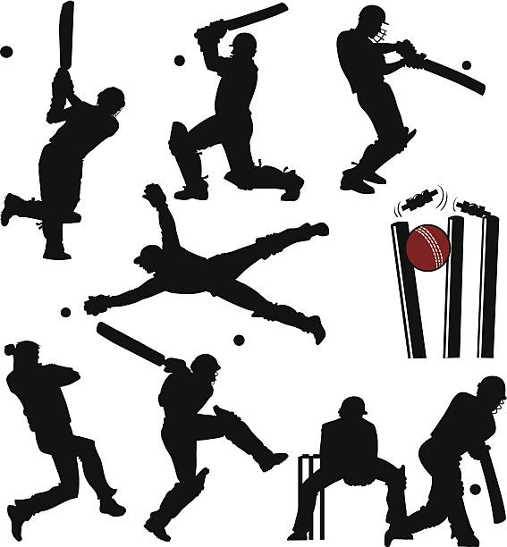 cricket-spieler silhouetten - cricket stock-grafiken, -clipart, -cartoons und -symbole