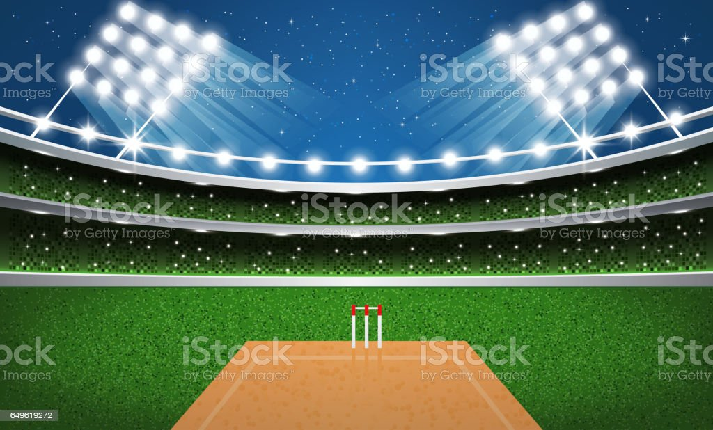 Stade de cricket avec néons. Arena. - Illustration vectorielle