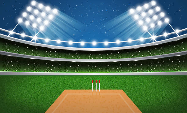 ilustraciones, imágenes clip art, dibujos animados e iconos de stock de estadio de críquet con luces de neón. arena. - críquet