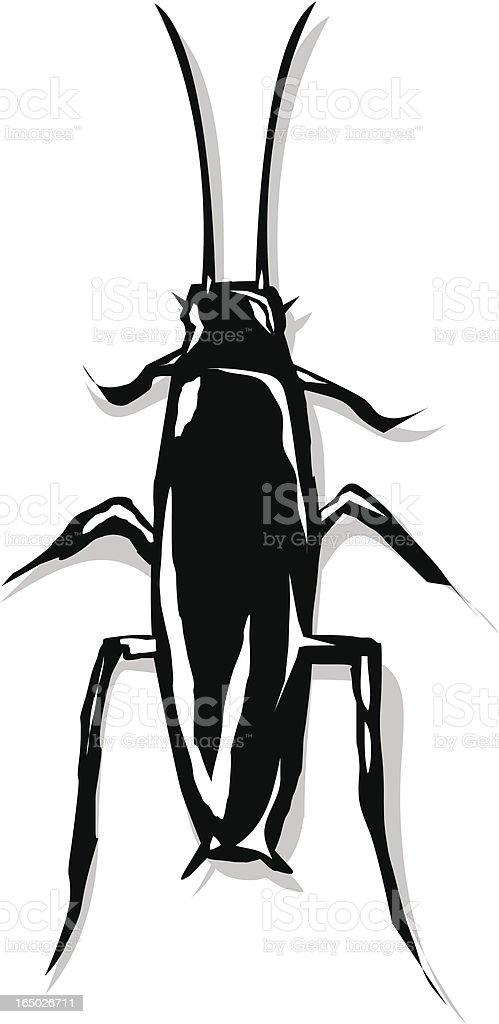 Cricket - Vector vector art illustration
