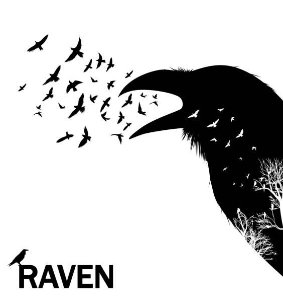 stockillustraties, clipart, cartoons en iconen met kwaken kraai of raaf. vectorillustratie. - ornithologie