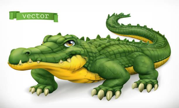 Crocodile, alligator. Funny character. Animal 3d vector icon Crocodile, alligator. Funny character. Animal 3d vector icon alligator stock illustrations