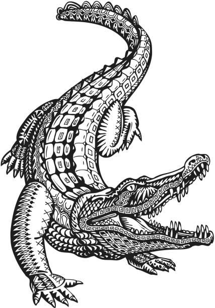 Crocodile, alligator or animal painted tribal ethnic ornament. Hand drawn Crocodile, alligator or animal painted tribal ethnic ornament. Hand-drawn vector illustration with decorative elements alligator stock illustrations