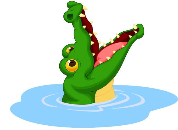 crocodile cartoon open its mouth - crocodile stock illustrations