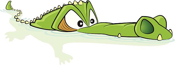 crocodile cartoon - crocodile stock illustrations