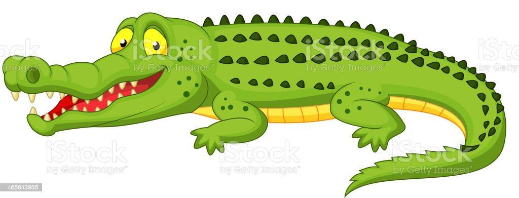 royalty free crocodile clip art vector images illustrations istock rh istockphoto com cute crocodile clipart crocodile clipart image