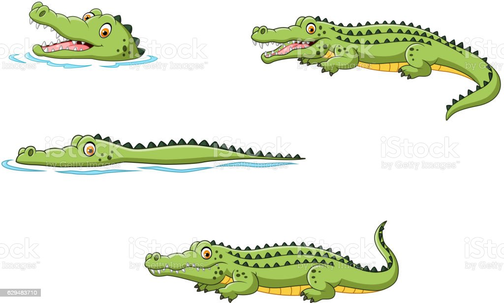 Crocodile collection set - Illustration vectorielle