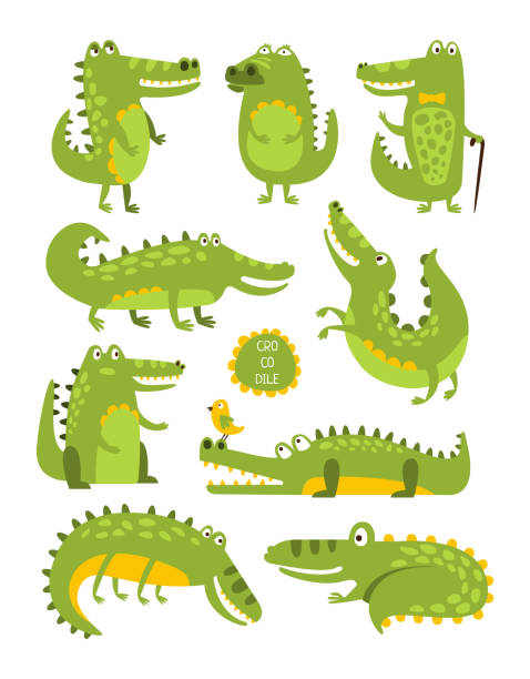 crocodile cute character in different poses childish stickers - crocodile stock illustrations