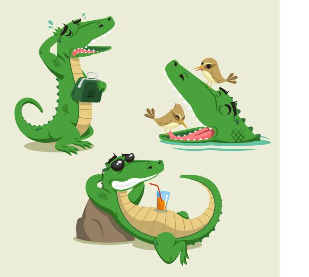 crocodile fun vector cartoon set - crocodile stock illustrations