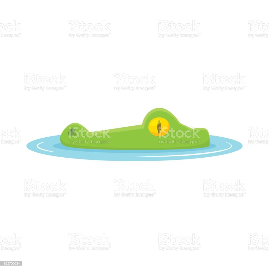 Tête de crocodile de vecteur de l'eau - Illustration vectorielle