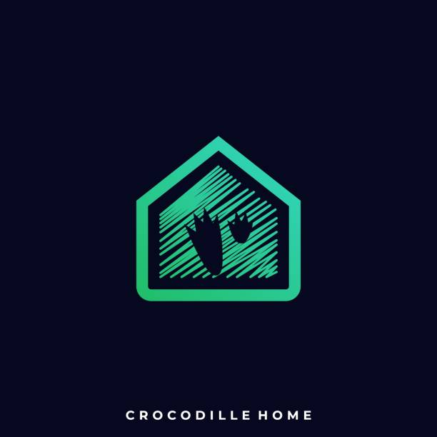 Crocodile Home Illustration Vector Template Crocodile Home Illustration Vector Template. Suitable for Creative Industry, Multimedia, entertainment, Educations, Shop, and any related business. amphibians stock illustrations