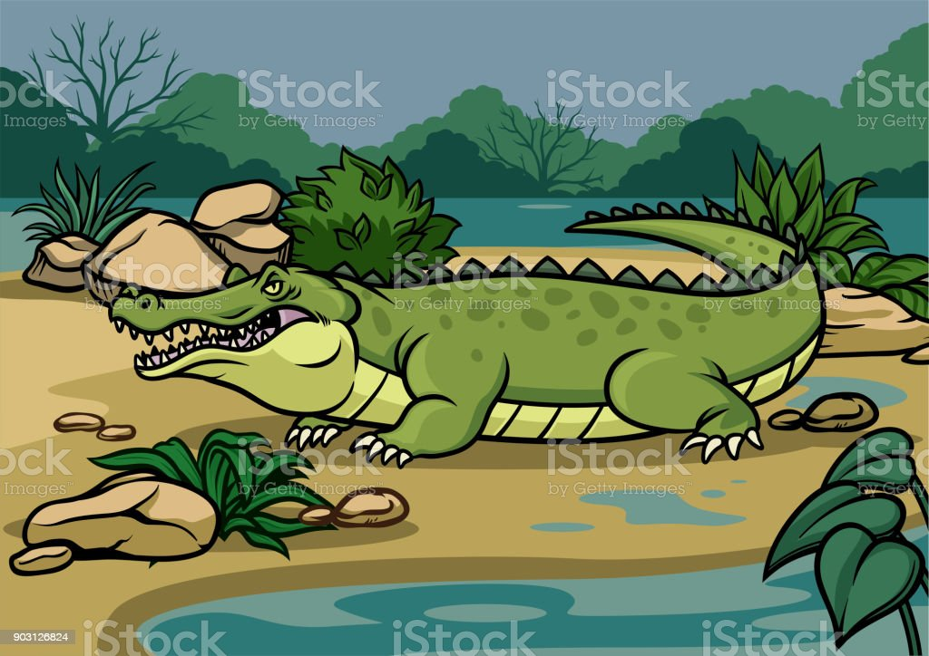 crocodile illustration in the nature vector art illustration