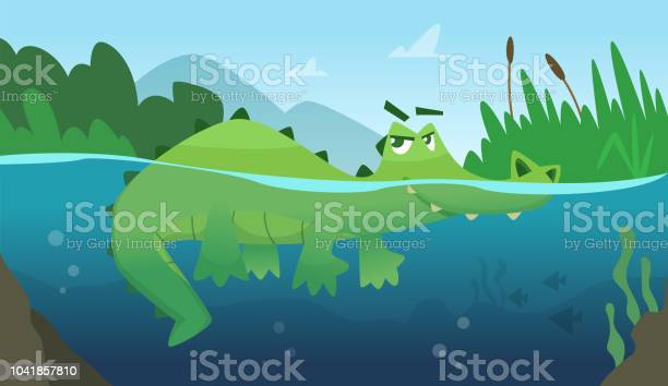 Crocodile In Water Alligator Amphibian Reptile Wild Green Angry Wild Animal Swimming Vector Cartoon Background Stock Illustration - Download Image Now