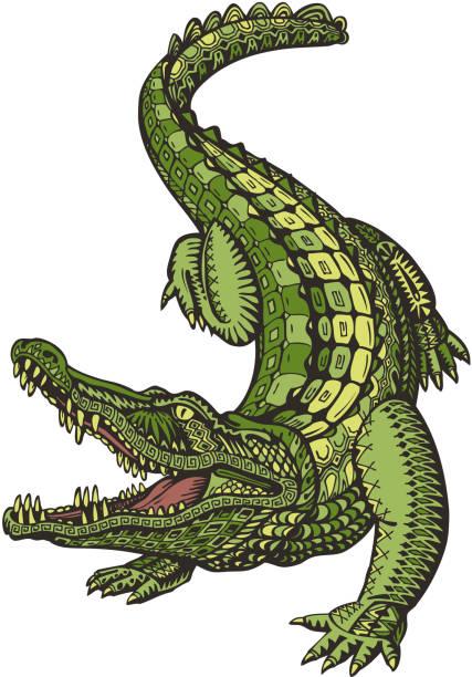 crocodile or alligator. animal in ethnic style. vector illustration - alligator stock illustrations