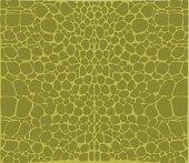 Crocodile Pattern