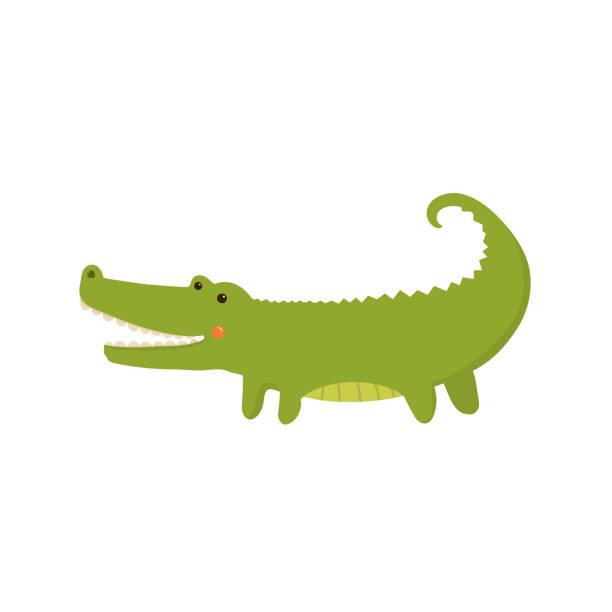crocodile realistic childish illustration - crocodile stock illustrations