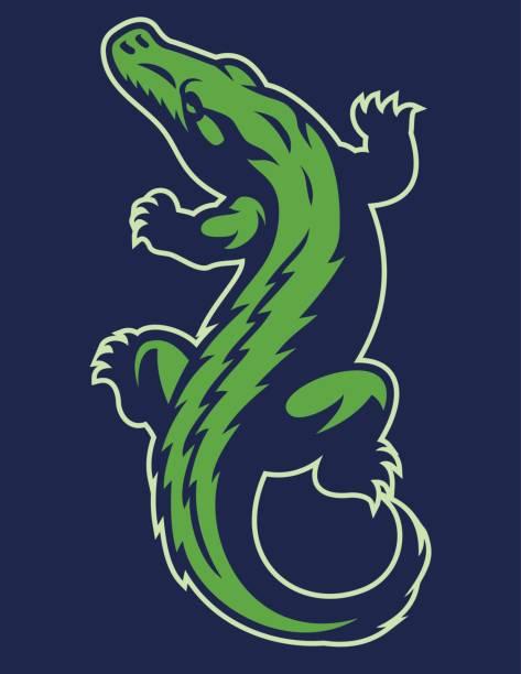 crocodile reptile mascot - crocodile stock illustrations