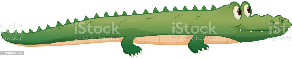 crocodile royalty-free crocodile stock vector art & more images of alligator