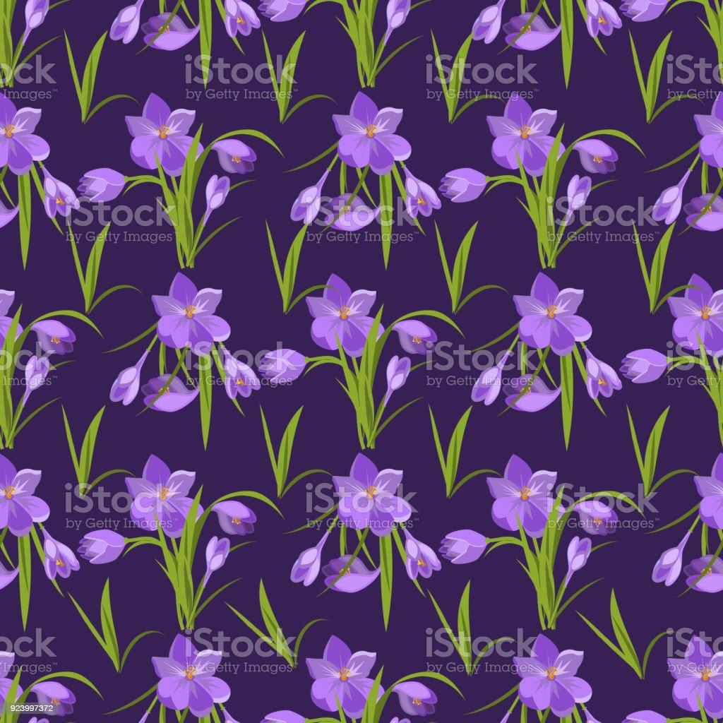 Crocus flowers spring floral beautiful pattern background violet crocus flowers spring floral beautiful pattern background violet flowering illustration vector nature purple april plant royalty izmirmasajfo